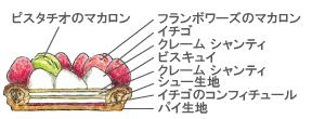 サントノレフレーズ断面図