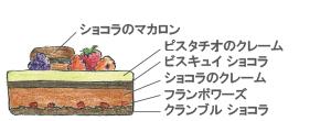 サパンショコラピスタッシュ断面図